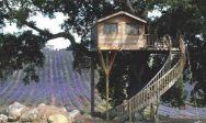 La-Piantata-treehouse-Tus-001
